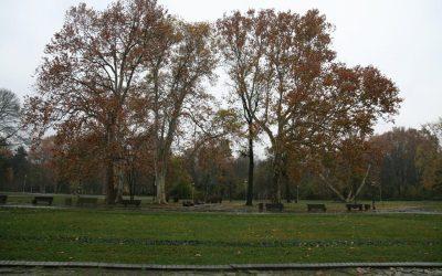 Topčiderski park